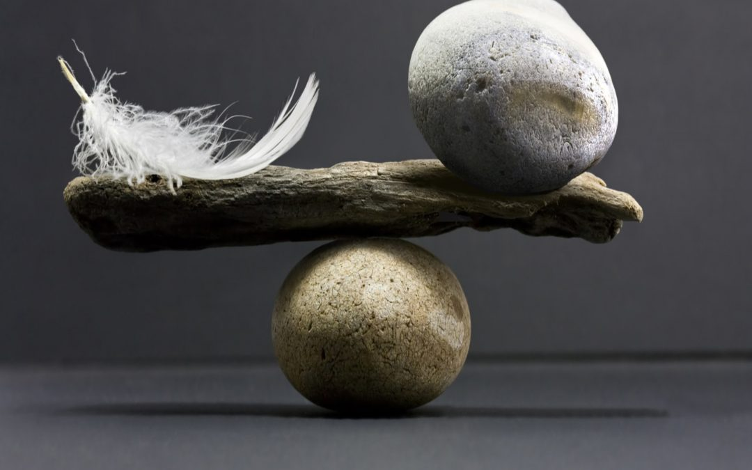 What You Need to Know About Balanced Leadership